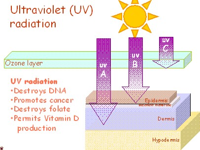 UV-radiation