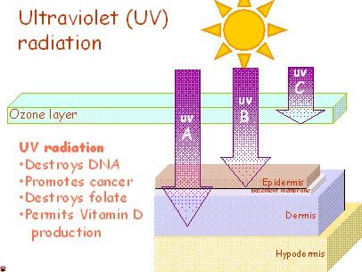 UV-radiation
